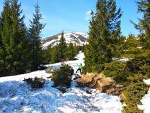 Frühling, der auf einem schneebedeckten Berg in den Karpaten klettert lizenzfreie stockfotografie