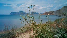 Frühling in der Bucht von Koktebel, Krim Lizenzfreies Stockfoto