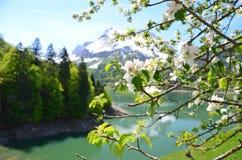 Frühling in der Schweiz Lizenzfreie Stockfotografie