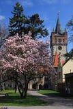 Frühling in der Stadt Stockbilder
