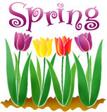 Frühling/ENV