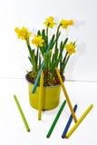 Frühling färbt Abstraktion unter Verwendung der farbigen Bleistifte Lizenzfreie Stockfotos