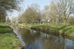 Frühling in Fluss Niers stockbild