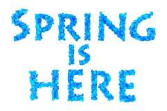 Frühling Frühlingsthema-Rüschenbuchstabe von der Rüschengusssammlung Hallo Frühling Stockfotos