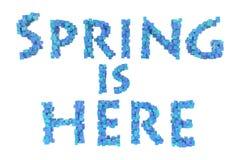 Frühling Frühlingsthema-Rüschenbuchstabe von der Rüschengusssammlung Hallo Frühling Stockbild