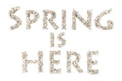Frühling Frühlingsthema-Rüschenbuchstabe von der Rüschengusssammlung Hallo Frühling Lizenzfreies Stockfoto