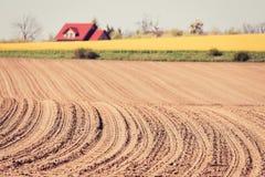 Frühling gepflogene Feldkurven Lizenzfreies Stockbild