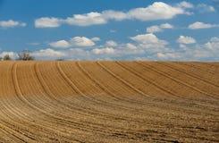 Frühling gepflogene Feldkurven in der Landschaft Lizenzfreie Stockfotos