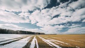 Frühling gepflogenes Feld bedeckte teils den Winter-schmelzenden Schnee, der zur neuen Jahreszeit bereit ist Gepflogenes Feld im  stock video