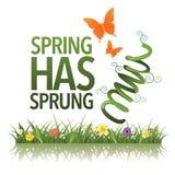 Frühling hat entsprungenes Design Stockbild