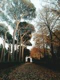 Frühling - Herbst Stockfotos