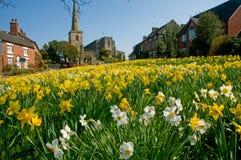 Frühling im Dorf Stockbild