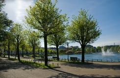Frühling im Park lizenzfreie stockbilder