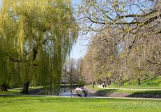 Frühling im Park Celle, Deutschland Stockfotos