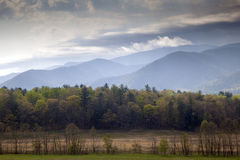 Frühling im rauchiger Gebirgsnationalpark in Tennesse Stockfoto