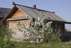 Frühling im russischen Dorf Stockbilder