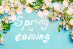 Frühling ist kommender Text, Frühlingsblütenzweige mit dem Bokehlighting auf blauem Türkishintergrund, Draufsicht, Grenze frühjah Stockfoto