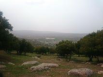 Frühling in Jordanien lizenzfreie stockbilder