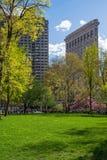 Frühling Madison Park Stockbild