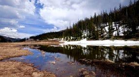 Frühling Marsh Land, See und Reflexion von Hügeln, von Bäumen und von Wolken Stockbilder