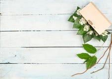 Frühling mit Schneeglöckchen-Hintergrund Lizenzfreies Stockbild