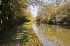 Frühling mit wilder Plum Blossom auf dem großartigen Verbands-Kanal an Yelvertoft-Abdeckung, Northamptonshire Lizenzfreie Stockfotografie