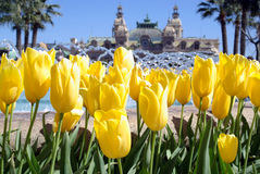Frühling in Monte Carlo Stockfoto