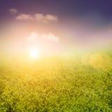 Frühling oder abstrakte Natur des Sommers Lizenzfreies Stockbild