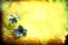 Frühling oder Retro- heller mit Blumenhintergrund des Sommers Lizenzfreie Stockfotos