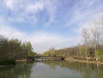Frühling in Peking olympischer Forest Park Lizenzfreies Stockfoto