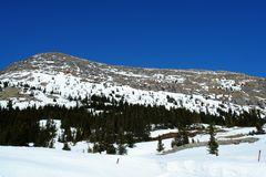 Frühling Rockies Lizenzfreies Stockbild