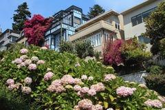 Frühling in San Francisco lizenzfreie stockbilder