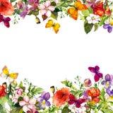 Frühling, Sommergarten: Blumen, Gras, Kräuter, Schmetterlinge Gelbe Blumen, Basisrecheneinheit, Inneres mit Tropfen watercolor Stockfotografie