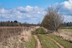 Frühling, Straße durch das Feld stockfotos