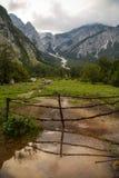 Frühling von Gebirgsfluss Tolminka, Tolmin, Slowenien stockbild