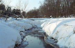 Frühling. Wasser des kleinen Flusses Stockfotografie