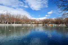 Frühling Zong-jiao-lu--kangpark reflektieren sich im Wasser Stockbild