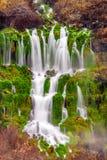 Frühlinge mit üppigen grünen Gräsern fließen von der Seite einer Klippe herein lizenzfreie stockbilder