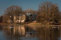 Frühlingsüberschwemmung in Lielupe-Fluss Stockfotografie