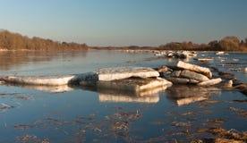Frühlingsüberschwemmung in Lielupe-Fluss Stockfotos