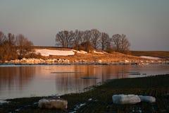 Frühlingsüberschwemmung in Lielupe-Fluss Lizenzfreies Stockfoto