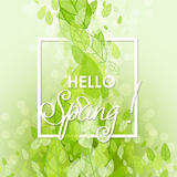 Frühlings-abstrakter Hintergrund Stockbilder
