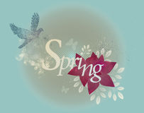 Frühlings-Auslegung Stockfoto