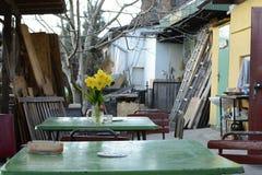Frühlings-Bündel gelbe Blumen in Saidwalk Café, Tschechische Republik, Europa lizenzfreie stockfotografie