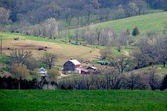 Frühlings-Bauernhof Stockfoto