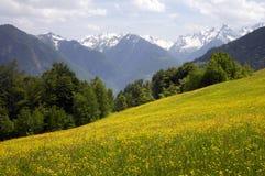 Frühlings-Berg stockfotos
