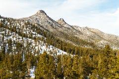 Frühlings-Berge um Las Vegas, Nevada Stockbilder
