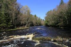 Frühlings-Bild von Fluss Eaus Claire Dells Lizenzfreies Stockfoto