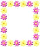 Frühlings-Blumen Lizenzfreie Stockfotos