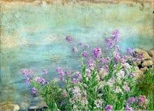 Frühlings-Blumen auf einem Grunge Hintergrund Stockfotos